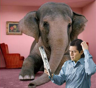 elephant-living-roomc.jpg